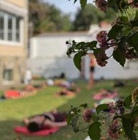 actividades yoga surfcamp